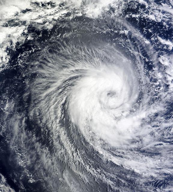Aggiornamento Algoritmo di Google: una tempesta estiva!